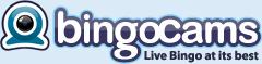 bingocam casino